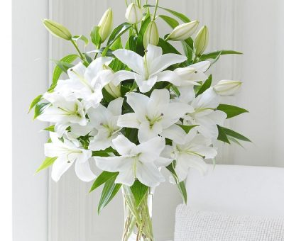 Cách Cắm Hoa Huệ Trắng Đẹp